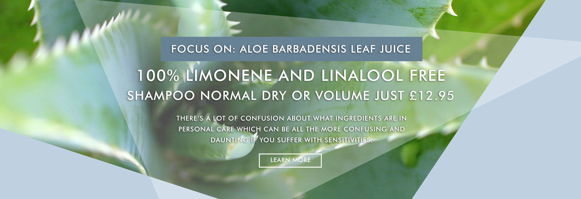 Limonene and Linalool Free Shampoo. Nourished with Aloe Vera.